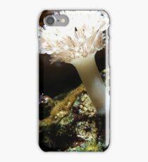UnderseaLife iPhone Case/Skin