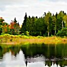 Forest Reflections by Helmar Designs