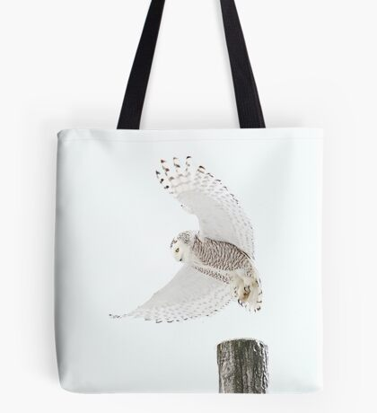 Startled - Snowy Owl Tote Bag