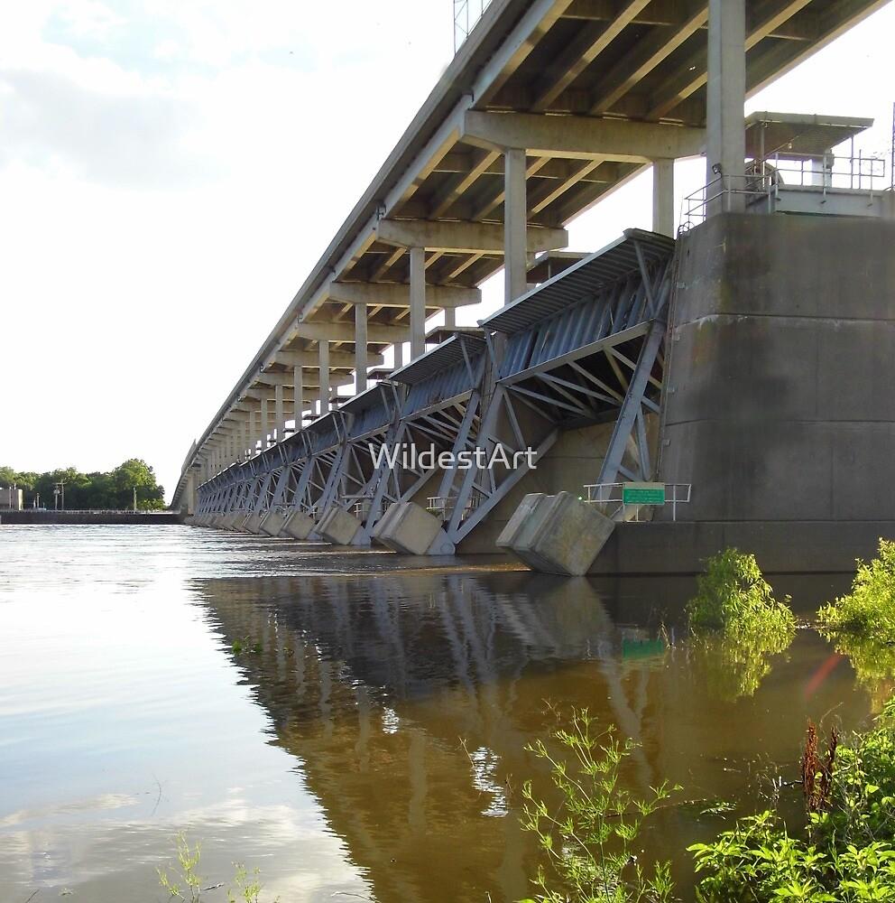 Bridge Reflections On The Arkansas River by WildestArt