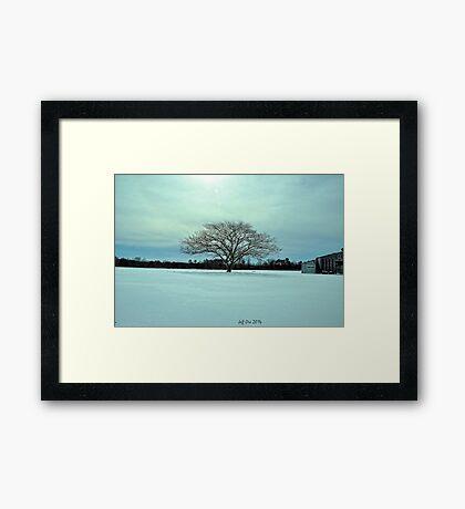 Snow farm HDR Framed Print
