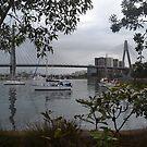 Anzac Bridge, Blackwattle Bay, Sydney II by Gary Kelly
