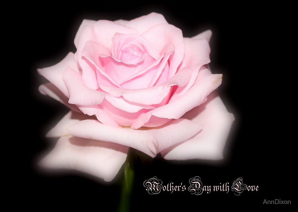 Mother's Day Rose by AnnDixon
