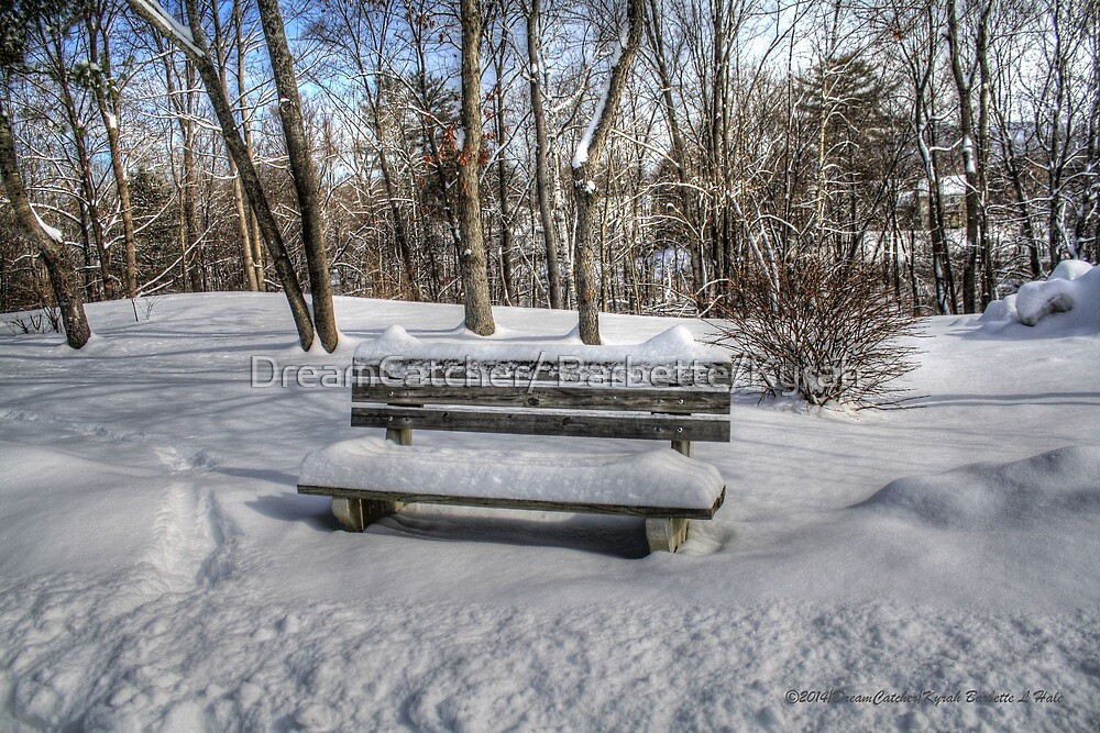 After the snow has fallen  by DreamCatcher/ Kyrah