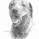 Happy dog drawing by Mike Theuer