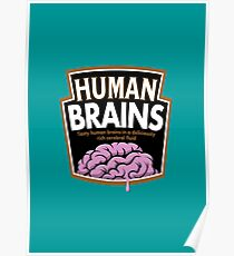 Human Brains Poster