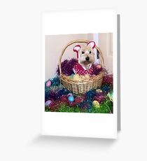 Easter Basket Westie Bunny Greeting Card