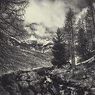 Timeless Mountains by Dirk Wuestenhagen