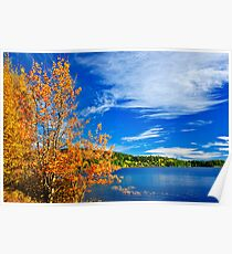 Fall forest and lake Poster