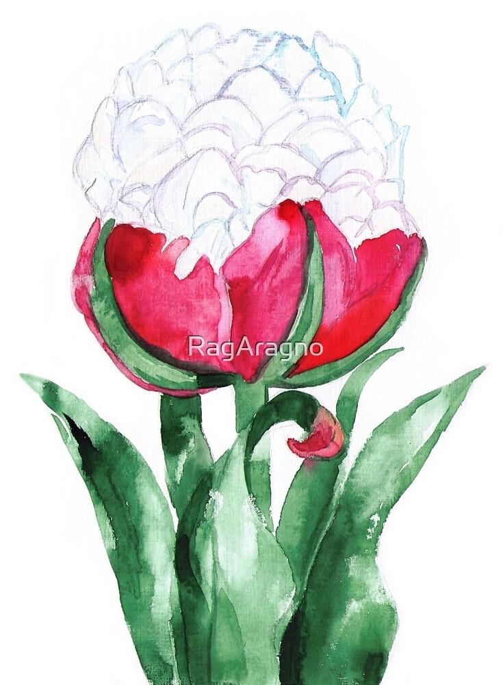 Ice Cream Tulip by RagAragno