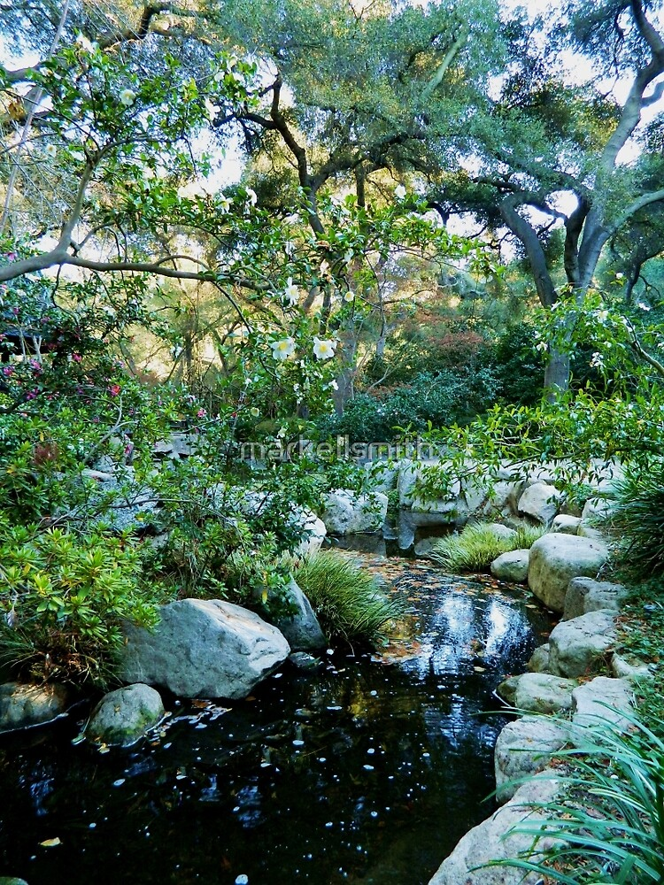 A Creek in the Garden by markellsmith
