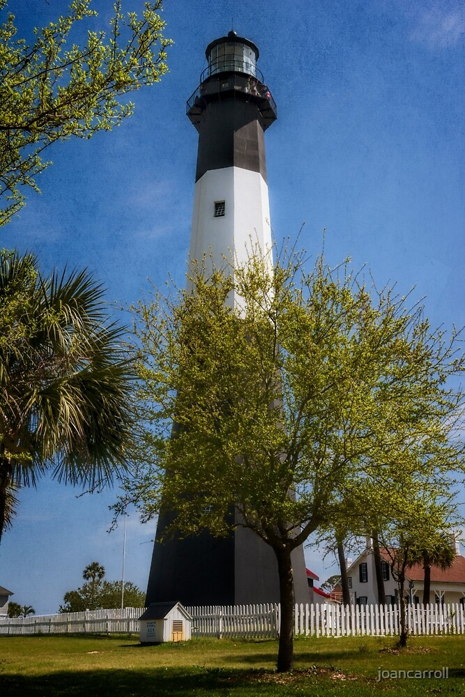 Tybee Island Lighthouse by joancarroll