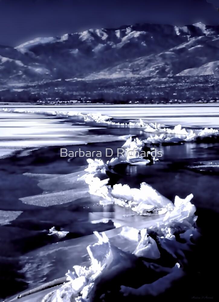 Winter at the Great Salt Lake  by Barbara D Richards