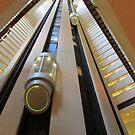 The Glass Elevator by joan warburton