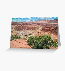 Canyon at Capitol Reef Greeting Card