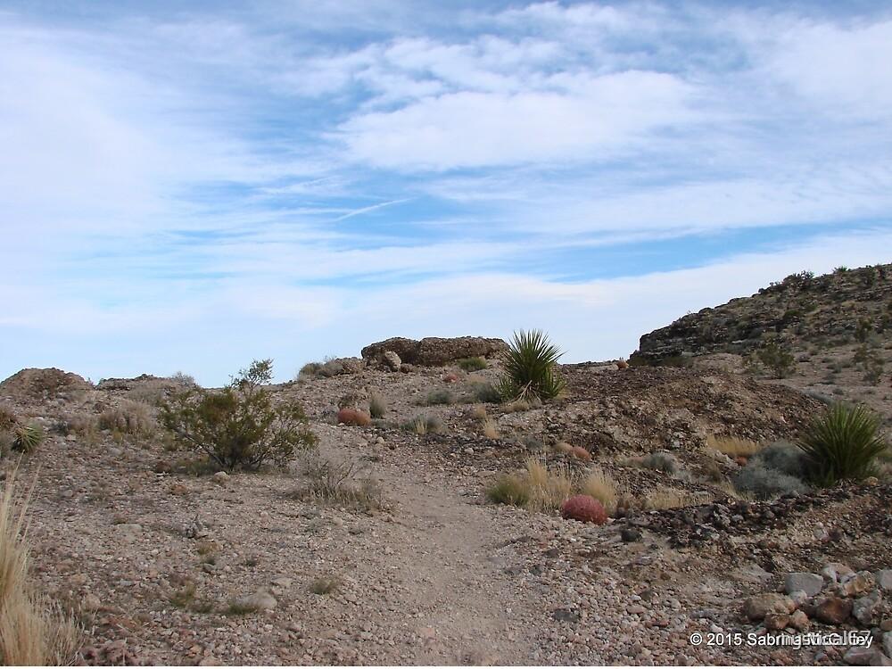 LV Desert Sky by Sabrina McCulley