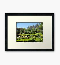 Rhododendrum Gardens 1 Framed Print