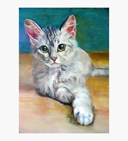 Cat 1 Photographic Print