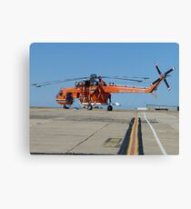 flying-monster collection 017 Canvas Print