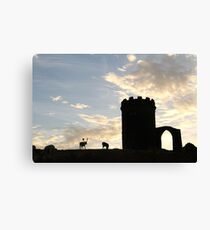 Old John at Bradgate park Canvas Print