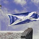 Flying the Saltire by fraser68
