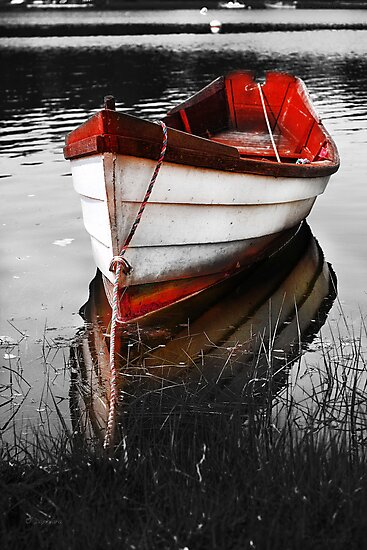 Red Boat by Artist Dapixara
