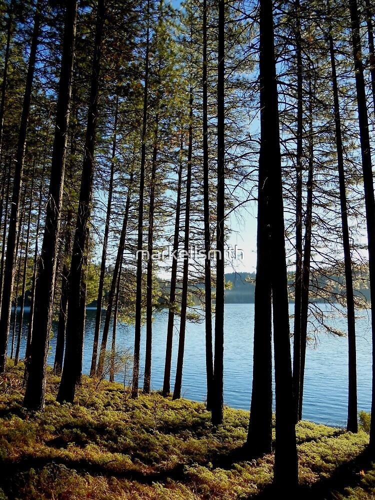 The Lake Woods  by markellsmith