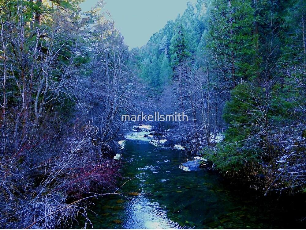 The Jenkinson Lake Creek by markellsmith