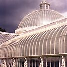 The Glass Palace by hmartinphotos