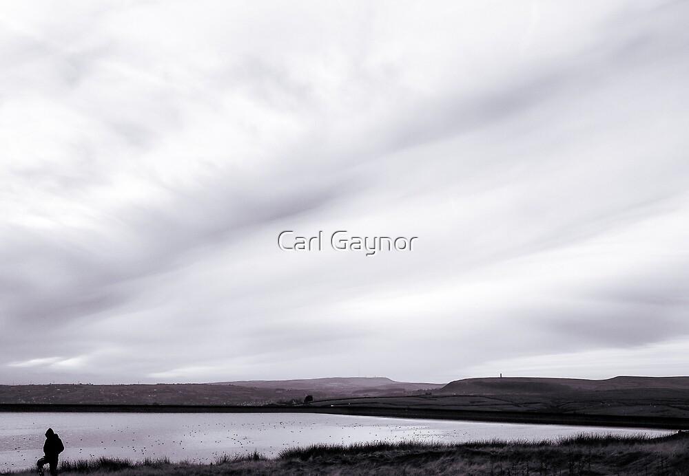 Border-Land - A View  by Carl Gaynor