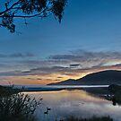 Captain Cook Creek Sunrise - Bruny Island, Tasmania, Australia by PC1134