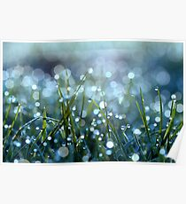 Fairy Drops Aqua Blue Poster