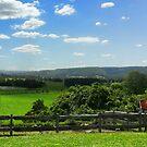 Farmland by Sharon Brown
