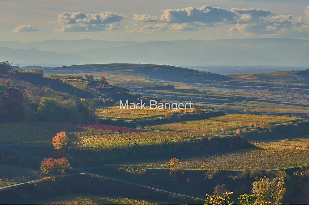 View across the Kaiserstuhl in Autumn by Mark Bangert