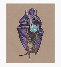 Wizard Bat (with Crystal Ball) Photographic Print