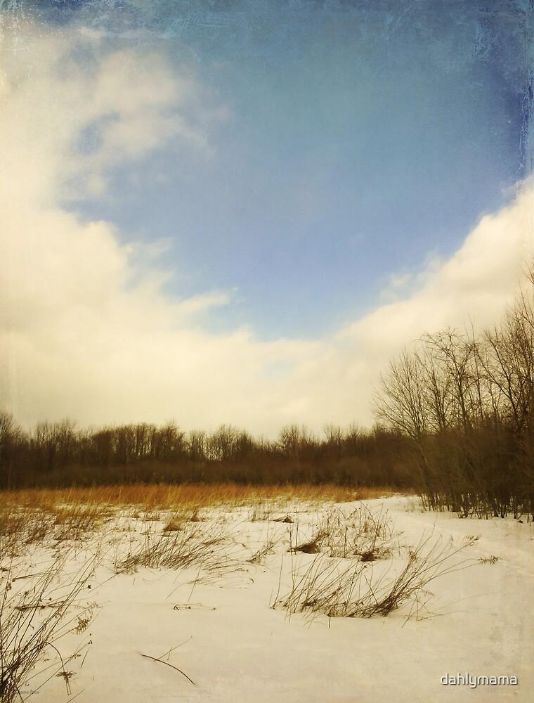 Old Woman Creek - Snowy Meadow by Shawna Rowe