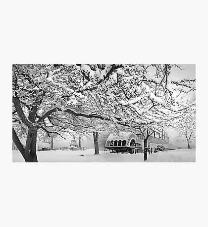 winter bliss (bw) Photographic Print