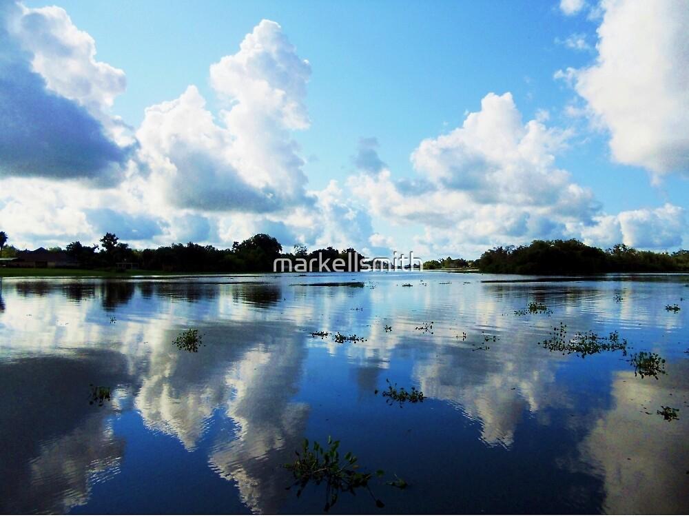 The Bayou by markellsmith