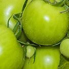 Green Tomatos by MikeSquires
