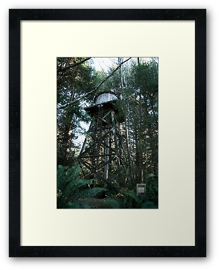 Water Tower by Troy Stapek