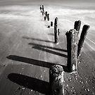 Shadows by PaulBradley