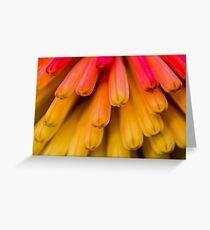Macro Flower Cluster 1 Greeting Card