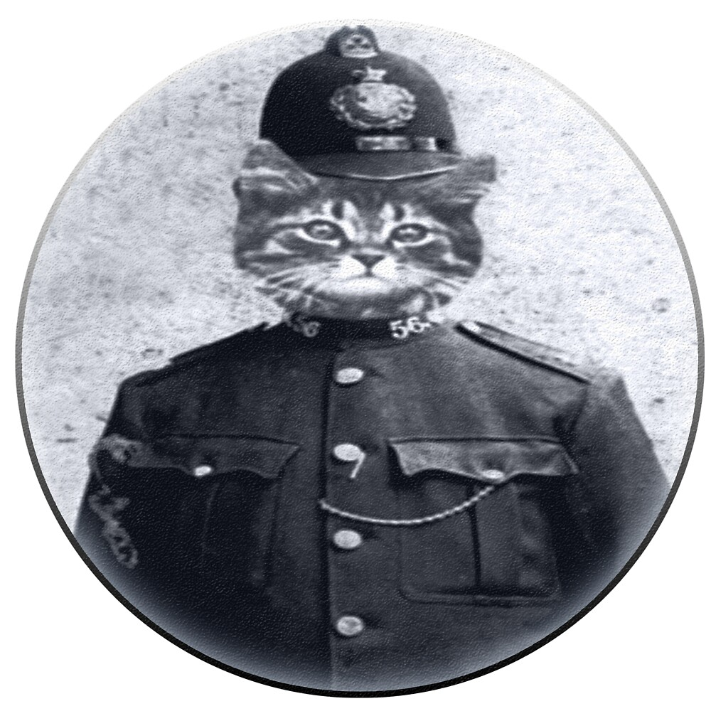 Police Cat Round by Rob Hopper