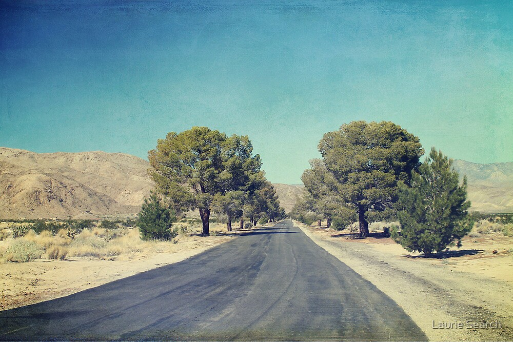 The Roads We Travel by Laurie Search