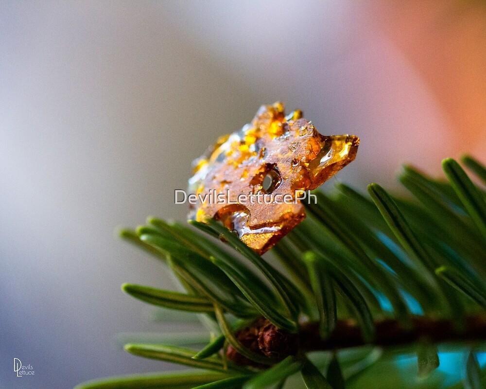 christmas sparkle  by DevilsLettucePh