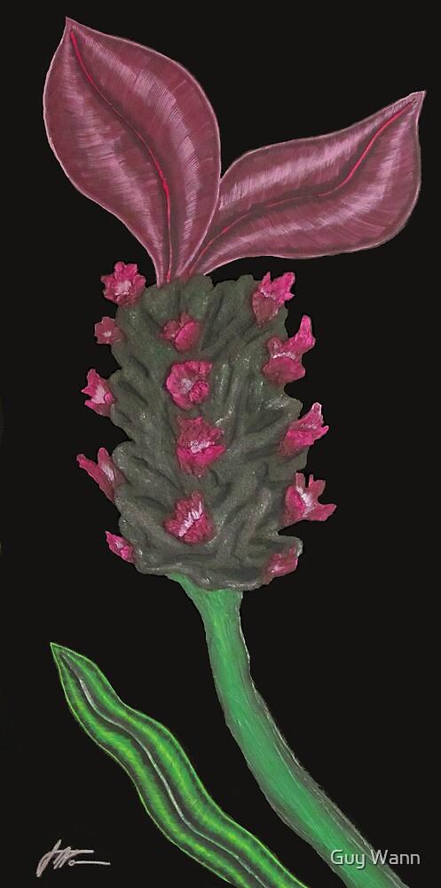 Lavender Twilight by Guy Wann