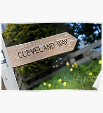 Wooden Cleveland Way signpost Poster