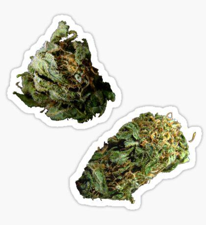 420 Buds #71 Sticker