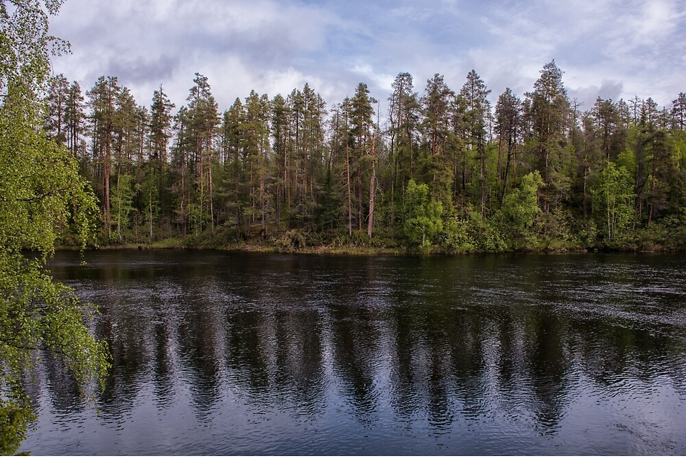 Reflections of the Finnish Forest by Kristin Repsher