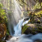 Sol Duc Falls von Michael Breitung